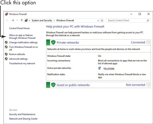Firewall exceptions- screenshot