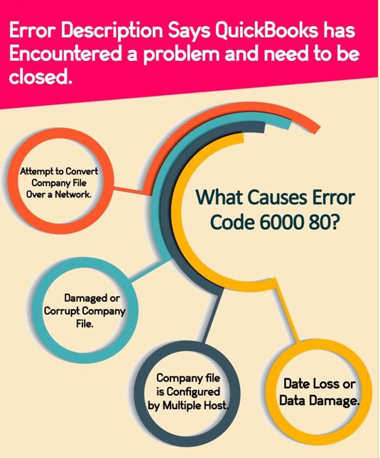 Causes of QuickBooks Error Code 6000 80 - Info-graphic