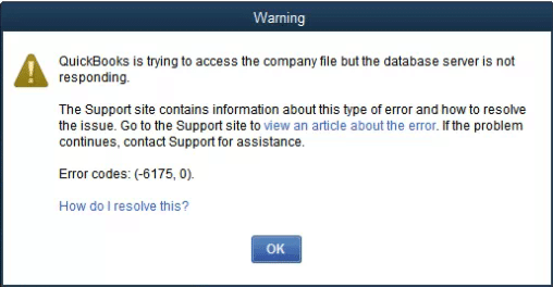 QuickBooks Error Code 6175,0 - Screenshot Image